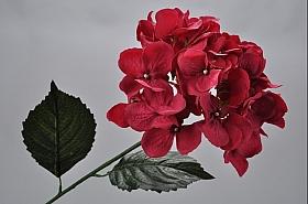 Hortensia 74 cm rosu DE