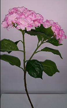 Hortensia 75 cm roz