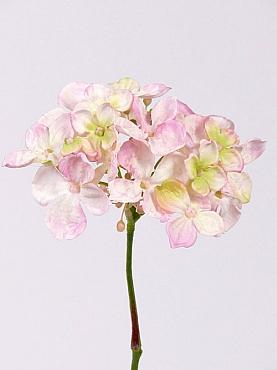 Hortensia D13xH30 cm roz