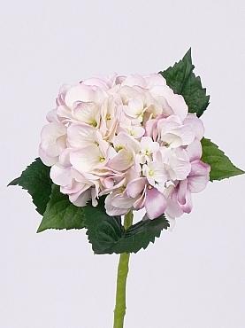 Hortensia D15xH48 cm alb - roz