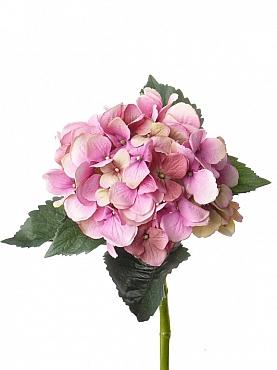 Hortensia D15xH48 cm roz