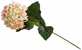 Hortensia D15xH70 cm HO roz - somon