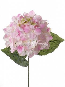 Hortensia D20xH68 cm alb
