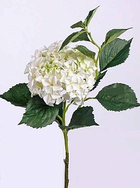 Hortensia D22xH105 cm alb Jade Colection
