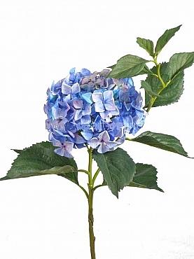 Hortensia D22xH105 cm albastru Jade Colection