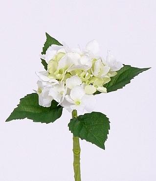 Hortensia De Luxe 35 cm alb