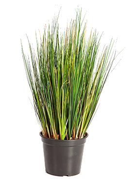 Iarba 60 cm 14776 Grass