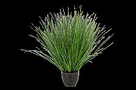 Iarba Fountain 65 cm verde Grass