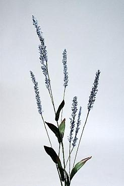 Iarba Golden Wattle 90 cm HO 93204 Grass