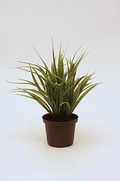 Iarba Vanilla 25 cm HO Grass