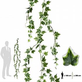 Iedera artificiala 200 cm verde - alb cu UV