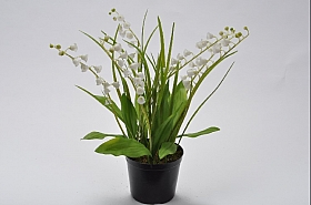 Lacramioare 34 cm alb DE Lily of valley