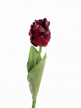 Lalea Parrot de luxe D10x7xH62 cm rosu