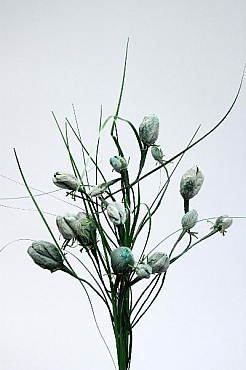 Lalele H60 cm HO verde