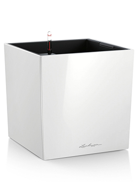 Lechuza Cube 40x40x40 cm alb cu sistem