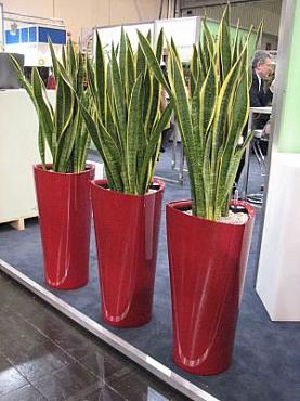 Lechuza Delta 30x30x56 cm, set complet rosu