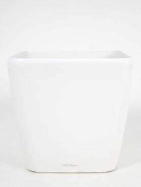 Lechuza Quadro 21x21x20 cm alb