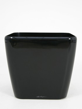 Lechuza Quadro 21x21x20 cm negru