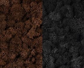 Licheni curatati si fara radacina 500g, 2 culori maro cu gri antracit