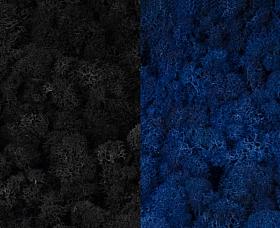 Licheni curatati si fara radacina 500g, 2 culori negru cu albastru clasic inchis