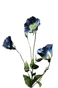 Lisianthus 63 cm HO albastru