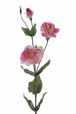 Lisianthus Eustoma De Luxe 81 cm roz
