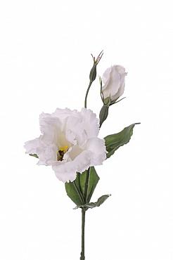 Lisianthus Eustoma De Luxe D10x6xH40 cm alb