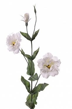 Lisianthus Eustoma De Luxe D8x2xH81 cm alb