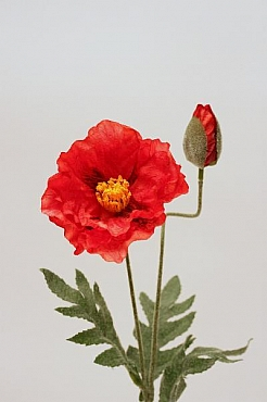 Mac 40 cm HO portocaliu Poppy