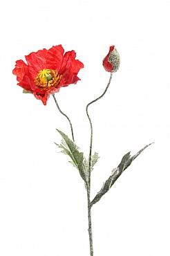 Mac 40 cm rosu Poppy