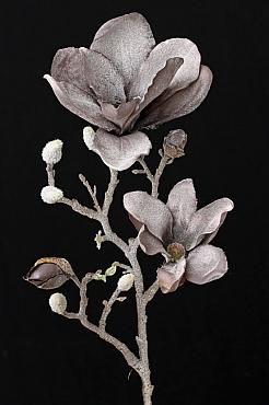 Magnolia 60 cm mov