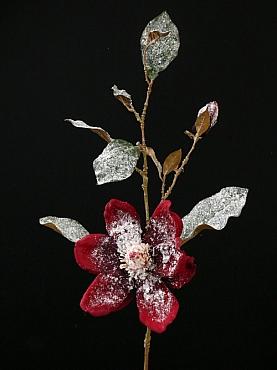 Magnolia 80 cm bordeaux