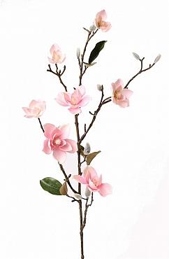 Magnolia 90 cm roz