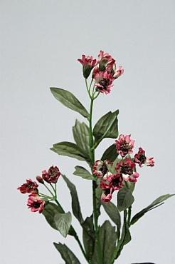 Margareta 60 cm HO burgundy