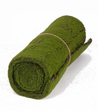 Muschi carpeta 50X205 cm