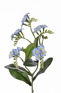 Myosotis 36 cm albastru Floarea Nu-ma-uita