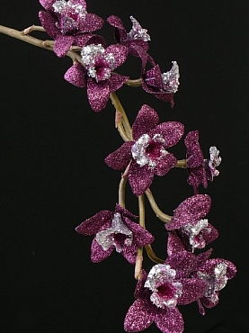 Orhidee Cymbidium Xmas D8x7xH80 cm mov