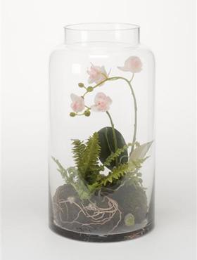 Orhidee Phalaenopsis in vas de sticla 40 cm 87222