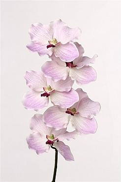 Orhidee Vanda 56 cm violet