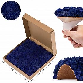 Panou licheni conservati 30x30cm, albastru violet Licheni Pizza box