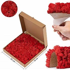 Panou licheni conservati 30x30cm, roz cyclamen Licheni Pizza box