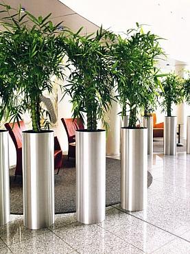 Planta artificiala in ghiveci President Column