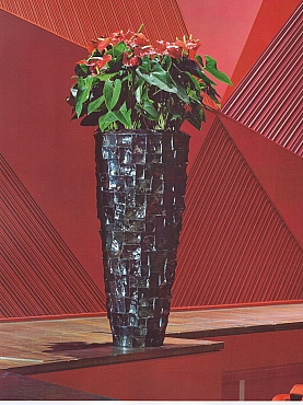 Planta naturala Anthurium in ghiveci Plants First Choice Ocean