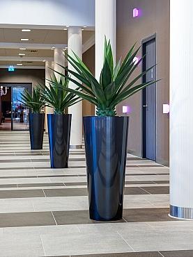 Planta naturala in ghiveci Art en Vogue Claire Jura