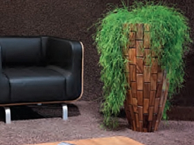 Planta naturala in ghiveci Plants First Choice Tropical planter