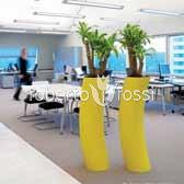 Plante naturale in ghiveci Plants First Choice Presix