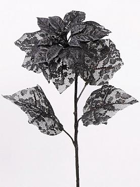 Poinsettia 53 cm negru