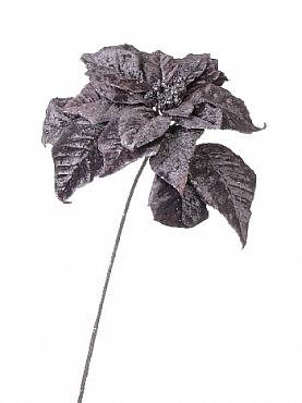 Poinsettia 70 cm negru