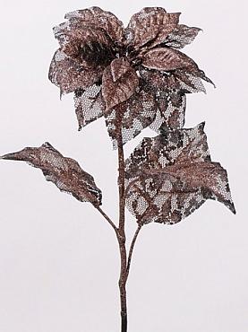 Poinsettia D13xH53 cm maro