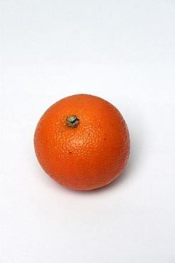 Portocala D6.5 cm HO